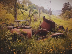 Hiking in Nye, Montana! Came across this very old wood-frame vehicle. {Summer photo contest. Feel free to share!}