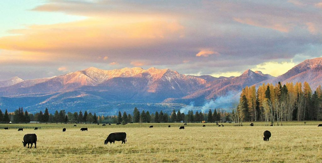 RHI Montana-Ranch-Evening_Fall